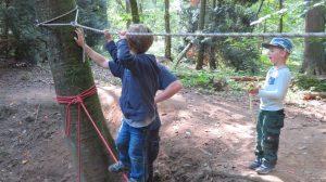 Pädagogische Konzepte unter der Lupe: Was ist eine Waldkita?